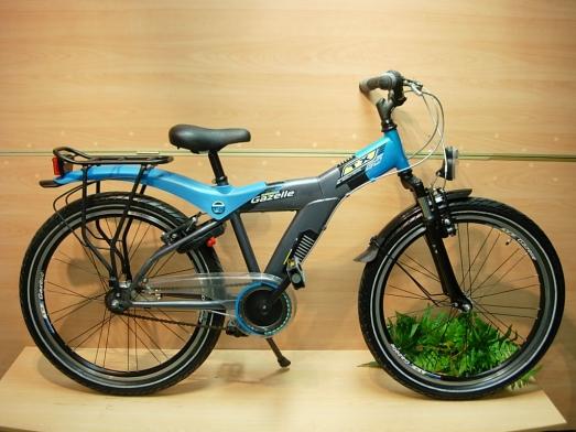 pretty cool pretty cool differently Gazelle TX 24 Kinderfiets Jongens te koop bij Fietskopen.com